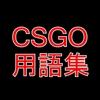 【CSGO】用語集