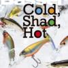 【Basser連動企画】冬のバス釣りに欠かせないハードルアー「シャッドプラグ」の水中映像を大公開!②