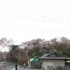 京都へ(お休みのお知らせ)