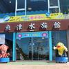 富山の水族館と富山湾の白えび