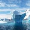 【実は違う】北極と南極なにが違うか分かりやすく解説!