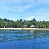 サンタンダー&モアルボアル④ ~スミロン島へ 可愛いマクロ写真です~