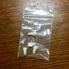 0618 リュッツォ 歯科処置