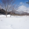 雪の季節到来!!⛄
