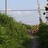 岐阜近傍の写真 現代版