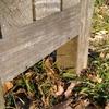 【小ネタ】冬の公園ベンチで