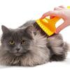 猫のブラッシングやりすぎはダメ!?頻度はどれくらい?
