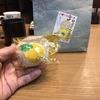 広島ブランドショップ銀座Tauで大人気!はっさく大福を広島県尾道因島に松愛堂さんに直接買いに行きました!
