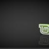 外付けHDDに Linux Mint 18 を入れる