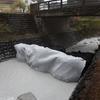 えびの市は宮崎県に農家への補償と具体的な水質改善策を要望!市役所で協議!!