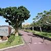 琉球大学でのCE研発表と研究活動の総括