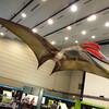 特別企画展 記念講演会「巨大翼竜は飛べたのか」@豊橋市自然史博物館