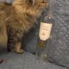 ボトルも絵になる美味しいロゼワイン:エスタンドン アンソランス