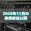 【目指せ不労所得】2020年11月の投資収益公開