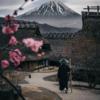 海外「富士山を撮った奇跡の一枚どうよ」