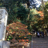 晩秋の鄙びた雰囲気漂う寺院 法然院
