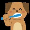 歯磨きするとうつに効果があるかも? 虫歯予防の他にもリフレッシュ効果がある!