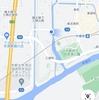 宇治川付近の植生 Part1 (2021年4月25日)