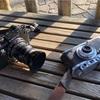 デジタルで撮り続けるとフィルムで撮りたくなり、その逆も然り。両方必要なんだよな、僕は。
