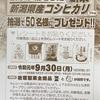 新潟産コシヒカリが50名様に当たる 天満屋×岩塚製菓 お米が当たるキャンペーンまとめ