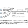 HTTP/2時代のバックエンド通信検討メモ