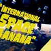 International Space Banana レビュー!無重力空間でバナナを回転させたいなら買い!