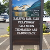 【ハワイ観光】ノースショアのHALEIWA TOWN CENTER (ハレイワタウンセンター)で亀と戯れる!
