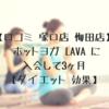 【口コミ 塚口店 梅田店】 ホットヨガ LAVA 体験行って入会して3ヶ月 【ダイエット 効果】