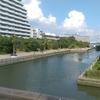 東京都江戸川区新左近川沿いを歩いてみた!
