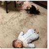 娘 3歳7ヶ月 はじめての保育参観。。。((((;゚Д゚)))))))