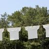 余った時間で何をする?自動洗濯乾燥機がおすすめの理由