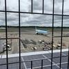 JALの新型A350XWBを激写セヨ!(2)
