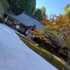 2020 比叡山延暦寺の紅葉 西塔エリア