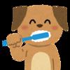 歯みがきセミナー開催します(^O^)/