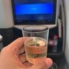 JAL 408便 ビジネスクラス ~2020欧州中東旅行 最終回~