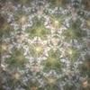 幾何的確率問題(7)