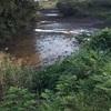 掛川野池群バス釣り完全攻略マップ『堤ケ池』