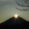 身延山 ダイヤモンド富士観賞会と早朝特別開帳 3月12日~14日