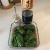 丸ごとピーマンのお浸しと冷凍保存 夏野菜の下ごしらえと常備菜(1)