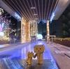 函館市 絢爛豪華な雰囲気の「湯の川・冬の灯り」