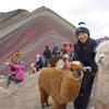ペルーの絶景!秘境のレインボーマウンテン1DAYツアー