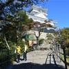 番外編 岐阜城に行って来ました