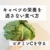 キャベツの栄養を逃さない食べ方!!