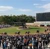 旅打ち日記 いまひとたびの京都編① 京都競馬場 2019.11.16