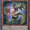 《輝光竜セイファート》からの《ヴァレルロード・S・ドラゴン》S召喚コンボ