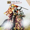 バトルライン(中世騎士版)|2人用ゲームの名作が中世の騎士の闘いに!入手が困難だったバージョン、開封いたしますよ!