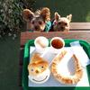 犬連れで遊べる広~い庭があるパン屋さん☆並柳SWEET