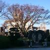 今日の広島平和祈念公園