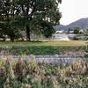 近藤池(兵庫県たつの)