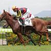 【阪神新馬戦】オルフェーヴルの全妹デルニエオール、最速34秒6の末脚で差し切る